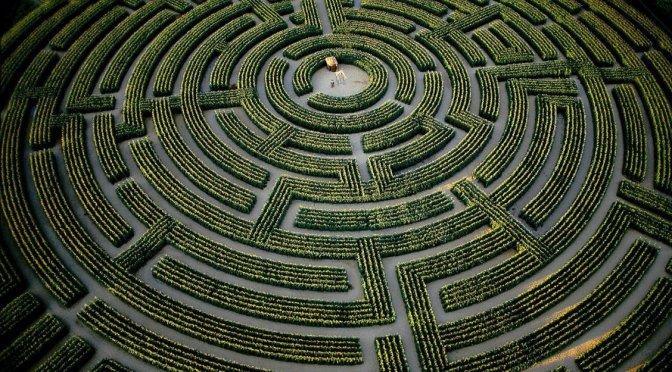 LIFE: Keluar dari Labirin