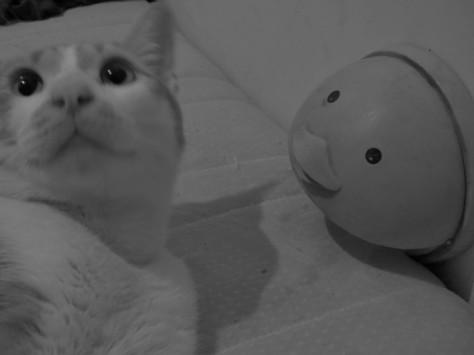 tuki-cute~04.jpg